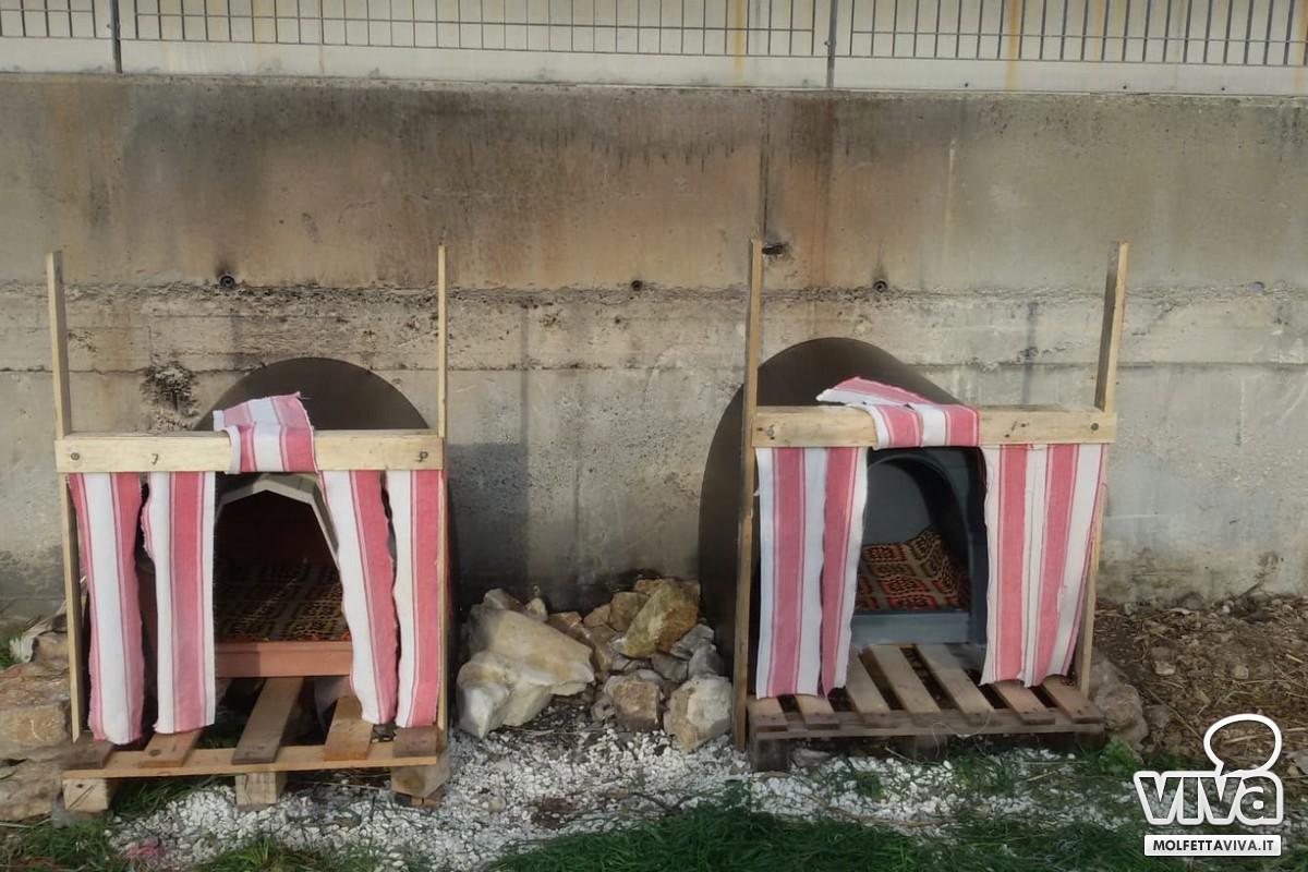 Aziende Modugno Zona Industriale nella zona industriale di molfetta cucce per tutti i cani