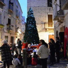Gruppo Vincenziane San Nicola