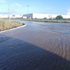 Zona industriale di Molfetta allagata