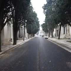Lavori al cimitero di Molfetta