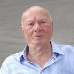 Sebastiano Minervini