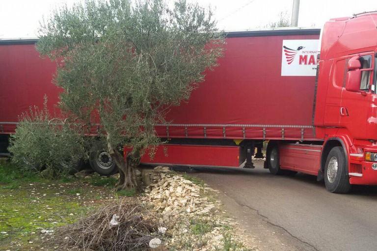 Camionista segue il navigatore e resta incastrato col Tir