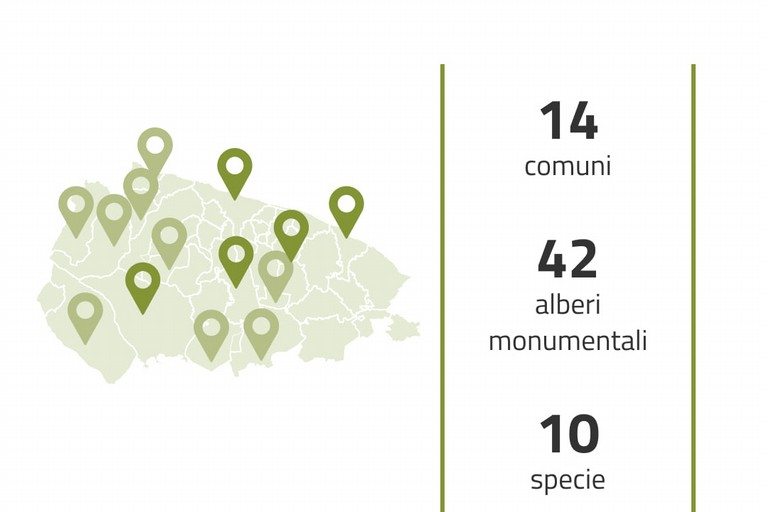 Alberi monumentali mappa