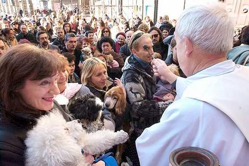 benedizione animali