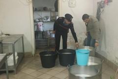 Controlli alimentari a Molfetta: sequestrati oltre 8.000 chili di merce