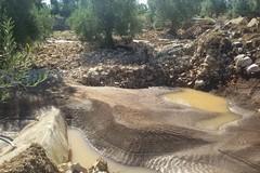 Alluvione, il Comune si attiva anche per i danni agli agricoltori