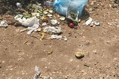 """Sesto intervento dei volontari di """"2hands"""": raccolti 80 kg di rifiuti"""