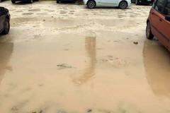Gli Attivisti 5 stelle riaccendono l'attenzione sulle buche nell'asfalto di Molfetta