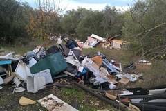 L'orrore di Molfetta: rifiuti speciali sulla vecchia strada per Corato