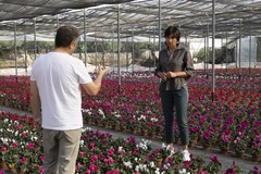 Cinone (Azione): «Gli agricoltori hanno pagato sin troppo gli errori del governo regionale»