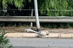 Perde il controllo dell'auto, si ribalta e finisce contro un palo: illeso