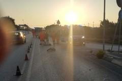 Travolto in bici: 38enne muore sulla Giovinazzo-Molfetta