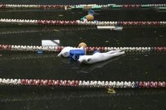 Piscina comunale, il Consiglio di Stato rigetta le richieste della società Molfetta Nuoto