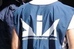 Droga, l'Antimafia: «Accordi di ampio respiro per massimizzarne i profitti»