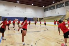 Preparazione atletica e settore giovanile. L'inizio di stagione della Nox Molfetta