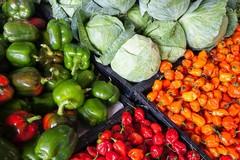 Buoni alimentari a 1200 famiglie dal Comune di Molfetta