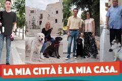 Manifesti per le vie di Molfetta per educare alla rimozione delle deiezioni canine