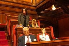 Crisi agricoltura, Carmela Minuto interviene in Senato
