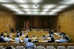 Consiglio comunale di Molfetta rinviato a venerdì 20 marzo in modalità telematica