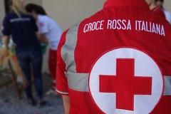 Una colomba solidale per sostenere la Croce Rossa Italiana di Molfetta