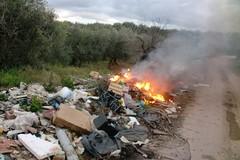 """Il fuoco per """"cancellare"""" i rifiuti abbandonati su via Ruvo"""