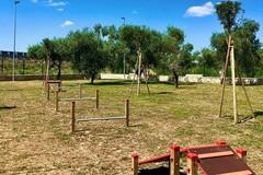 Donazione del Puglia Outlet Village per il nuovo dog park di Molfetta