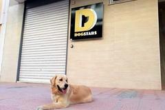 """""""DogStars, we are different"""", un centro benessere per i cani a Molfetta"""