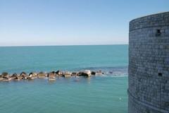 Visite e turisti nei siti di Molfetta: i dati delle affleunze
