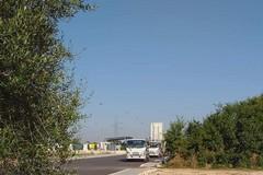 Centro raccolta rifiuti, ancora querelle tra residenti e Comune alla Madonna della Rosa