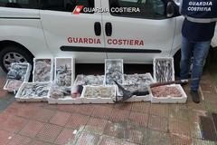 Prodotti ittici non tracciati o senza etichettatura: sequestrati 110 chili