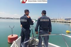 Sequestro di ricci di mare nel porto di Molfetta. Sanzioni della Capitaneria