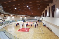 Nico Allegretta è l'allenatore del Futsal Terlizzi