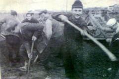 Battaglia di Capo Matapan, si cercano gli eredi dei caduti molfettesi