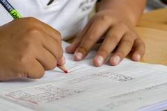 Didattica mista, a Molfetta c'è insoddisfazione:  «Serve parità tra lezioni in presenza e DaD»