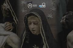 Processione della Pietà, sabato 15 diretta video su MolfettaViva