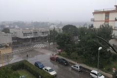 Pioggia mista a neve su Molfetta. Temperature sotto lo zero
