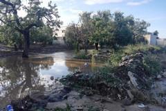 Rischio idraulico alla zona industriale di Molfetta, Legambiente: «L'attuale progetto non risolve il rischio inondazioni»