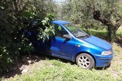 Due auto rubate a Molfetta ritrovate nelle campagne di Andria