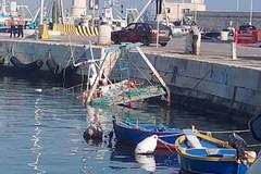 Peschereccio si inabissa nelle acque del porto di Molfetta