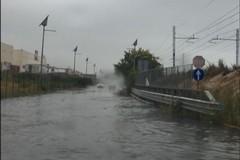 Vento e forti temporali, a Molfetta c'è anche l'allerta meteo