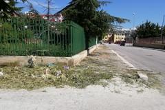 Tagliata l'erbaccia a Ponente ma è abbandonata sui marciapiedi: chi deve raccoglierla?