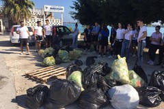 """Si conclude la campagna """"2hands for School"""": raccolti 263 kg di rifiuti"""