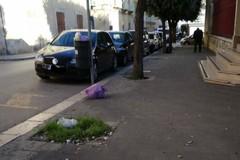 """Il verde nella scuola, l'immondizia abbandonata all'esterno della """"Filippetto"""""""
