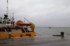 Maltempo, sul porto di Molfetta è corsa a mettere le barche in sicurezza