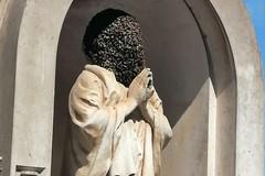 Sciame d'api al cimitero: intervengono la Gepa e l'apicoltore