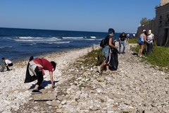"""Oltre 20 cittadini ripuliscono la spiaggia pubblica """"la Bussola"""""""