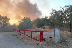 Incendio in un deposito edile: in fiamme pedane in legno e pannelli