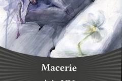 Macerie: pubblicato il nuovo libro di Lesflauners