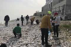 """Gli alunni della scuola """"Giaquinto"""" puliscono la spiaggia del Lungomare di Molfetta"""