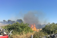 Incendi estivi, arriva l'ordinanza del Sindaco per la prevenzione e la sicurezza